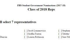Class Representative Elections