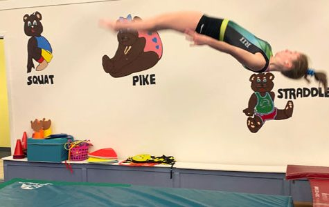A Day in the Life of a Gymnast!